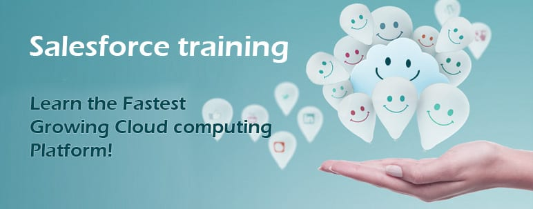 Salesforce Certification Training